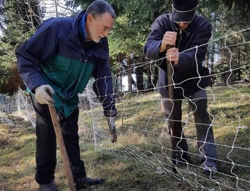 """Gruppo Grandi Carnivori Cai: """"Un 2018 ricco di attività e iniziative"""""""