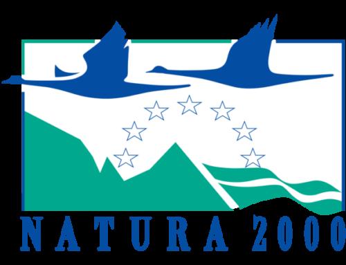 'Vivere l'ambiente'. La Rete Natura 2000 del Nord-Est