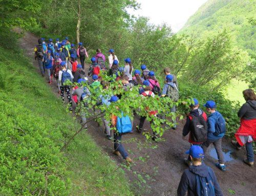 Educazione ambientale: il Ministero premia 5 progetti CAI