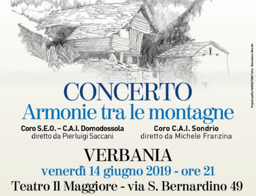 Appuntamento con il concerto 'Armonie tra le Montagne'