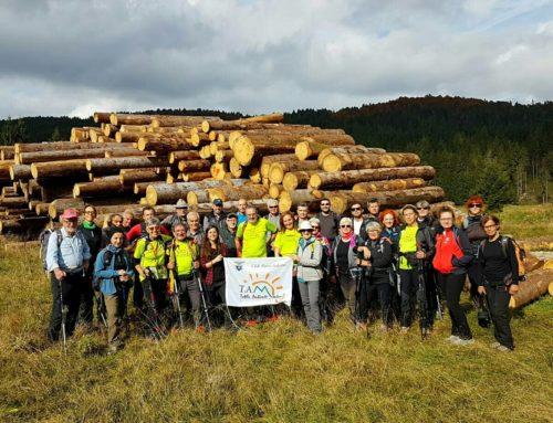 Un anno da Vaia: per il Cai serve una governance d'insieme per la tutela dei boschi