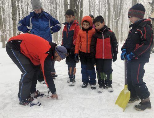 Prevenzione e autosoccorso in montagna d'inverno: torna 'Sicuri con la neve'